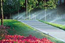 Public Sector Irrigation Controllers